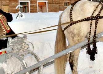 1 февраля. Зима в  Русском стиле.